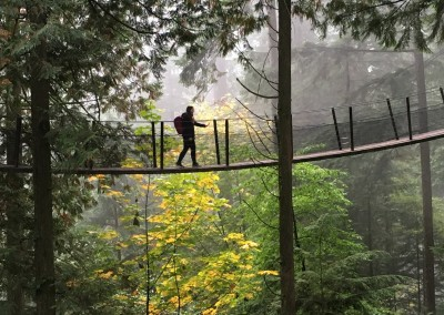 VIU (Canada) - Capilano Suspension Bridge