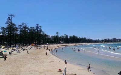 Manly, a suburb of Sydney – Study abroad in Australia