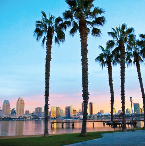 Videoblog Lina J. – California Dreaming