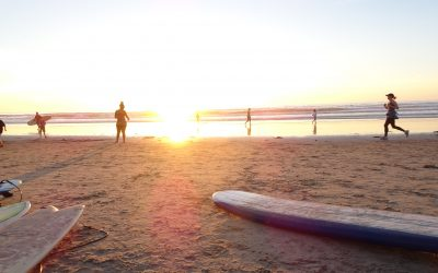 Surfing in San Diego – Study Abroad USA