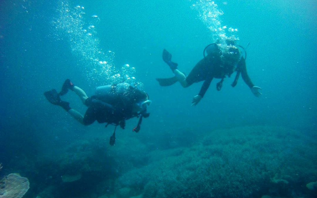 Great Barrier Reef – 4 Days in Cairns – Study Abroad Australia